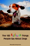 100 silliest things