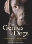 Hare Genius of dogs