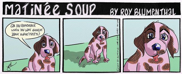 dog alzheimer's